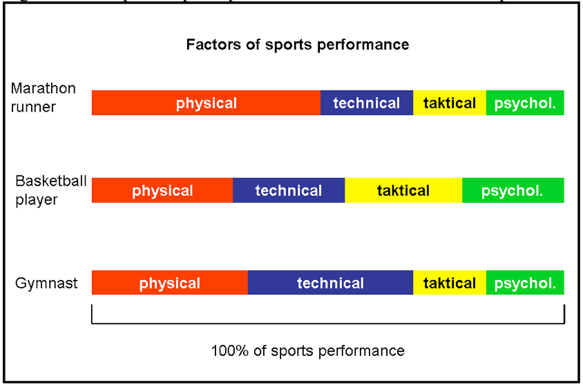 classification of sports according to players composition